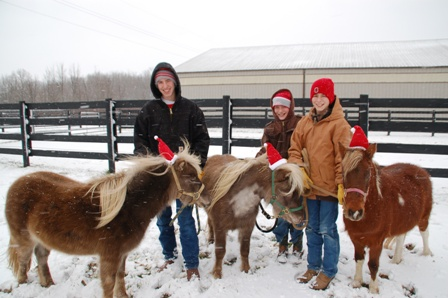 Are the horses shrinking...or the boys growing?