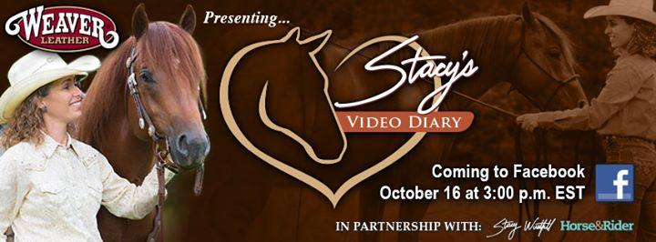 Stacys Video Diary