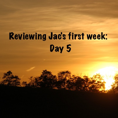 Jac Day by Day Review Day 5