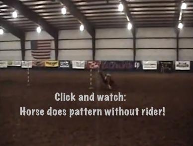 Riderless Pole Horse