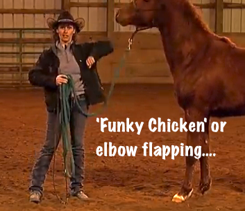 Funky Chicken or elbow flapping with a horse