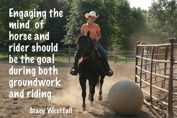 engaging horses mind