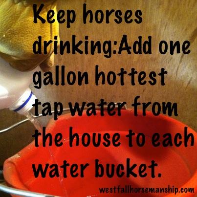 Keep horses drinking