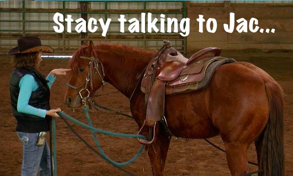 Stacy Westfall colt starting