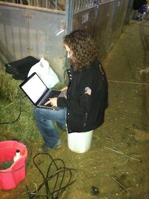 blog at stall