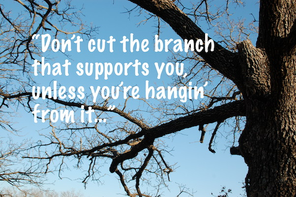 Don't cut the branch that supports you...