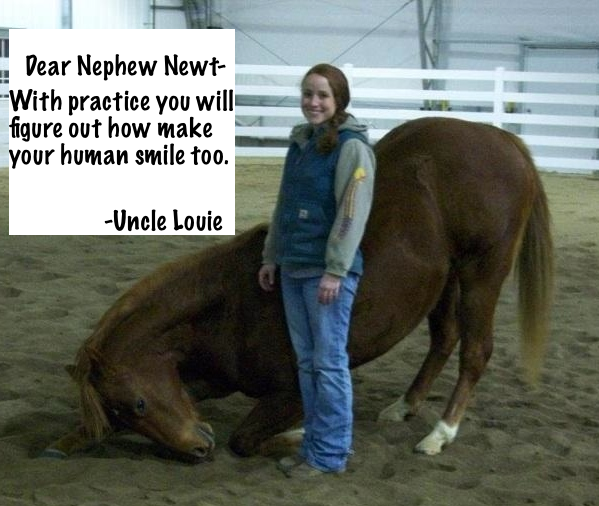 Horse bowing