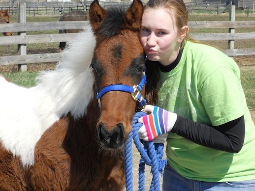 Maddie with her nurse mare foal, Pickle, the first week at home...compare to the senior photo above!