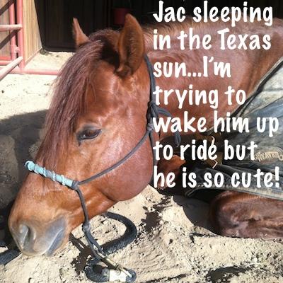 sleepy Jac