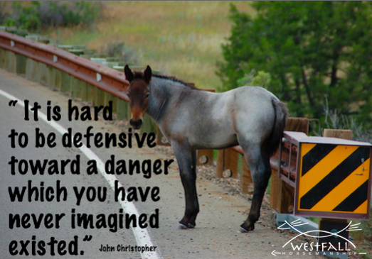 It is hard to be defensive toward a danger which you have never imagined existed.