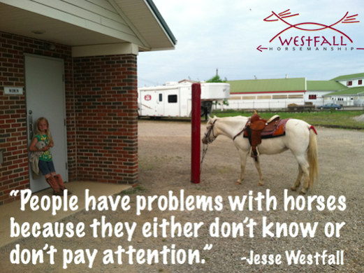 """People have problems with horses because they either don't know or don't pay attention."" Jesse Westfall quote"