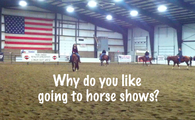 Why do you like going to horse shows