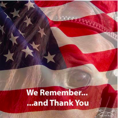 We Remember...and Thank You
