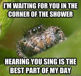 sing spider