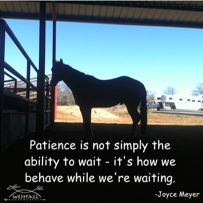 Patience is not simply the ability to wait - it's how we behave while we're waiting.