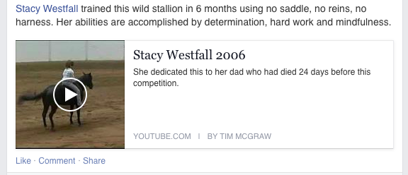 Stacy Westfall, the deaf mute rumor has taken another twist...now Roxy (a mare) is being called a wild stallion