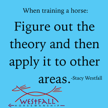 Stacy Westfall horse training theory