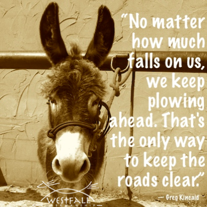 """No matter how much falls on us, we keep plowing ahead. That's the only way to keep the roads clear."" %0A― Greg Kincaid"