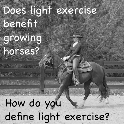 Does light exercise benefit growing horses? How do you define light exercise?
