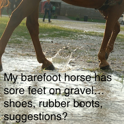 My barefoot horse has sore feet on gravel…shoes, rubber boots, suggestions?