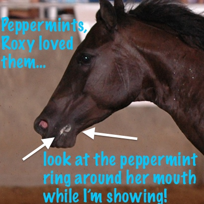Roxy loved peppermints