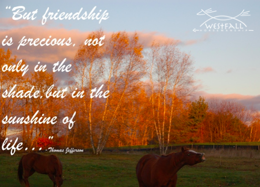 But friendship is precious, not only in the shade but in the sunshine of life