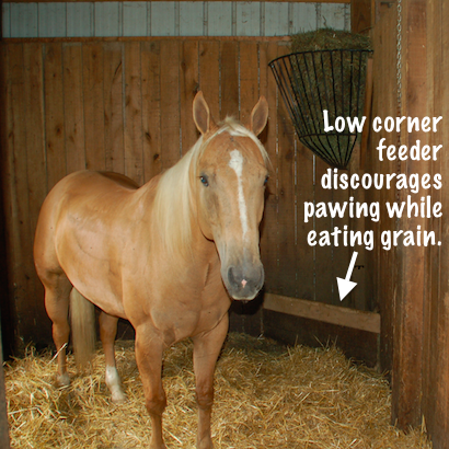 Low corner feeder discourages pawing while eating grain.