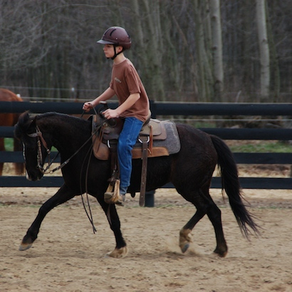 training a small pony to ride