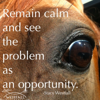 Remain calm and see the problem as an opportunity. Stacy Westfall quote