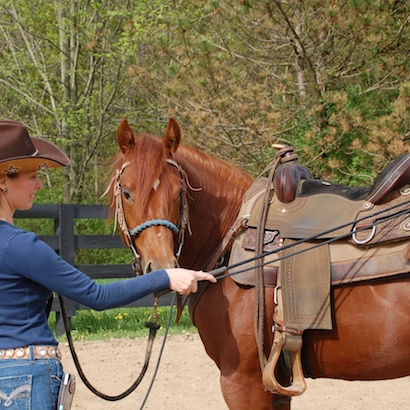 What is the differences between a lunge whip and a carrot stick or stick & string?
