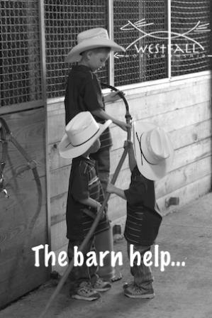 The barn help