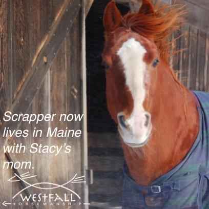 Scrapper in Maine