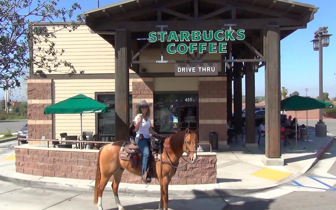 Starbucks Pony Espresso: Riding My Horse, Newt, Thru the Drive Thru