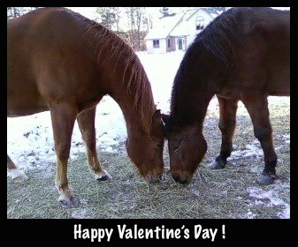 Can you see the heart their heads make?