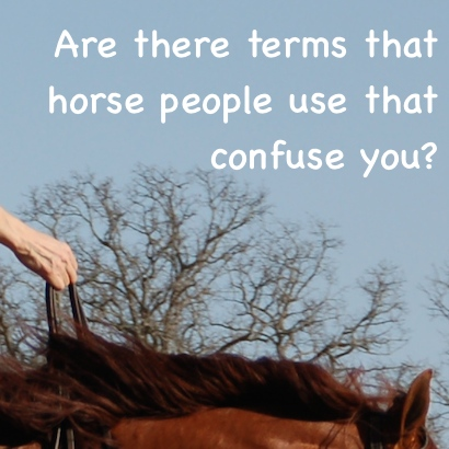 Are there terms that horse people use that confuse you?