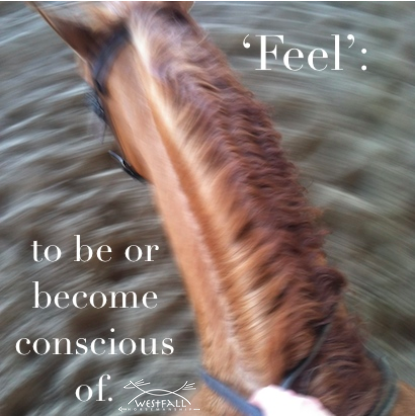feel- to be or become conscious of