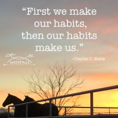 The mental habits we create in ourselves and our horses.