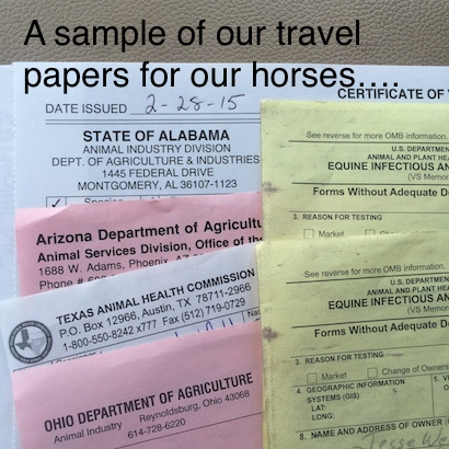 a sample of horse papers needed for travel with horses