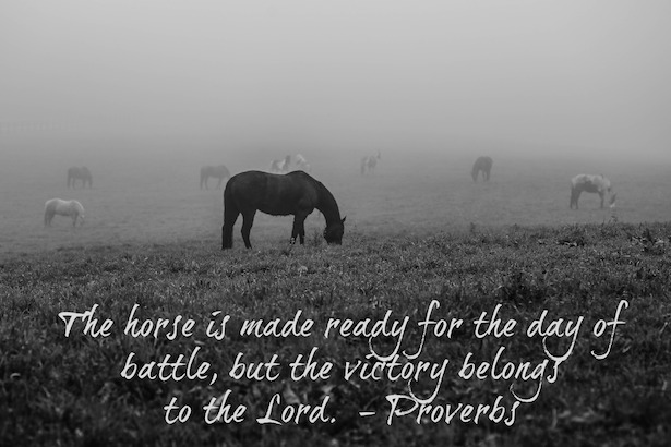 The horse is made ready for the day of battle, but the victory belongs to the Lord.