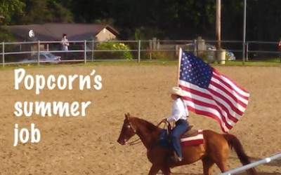 Do you ever wonder if a beginner rider riding your horse will confuse him?