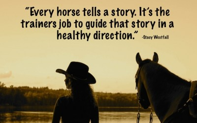 Every horse tells a story. It's the trainers job to guide that story in a healthy direction.