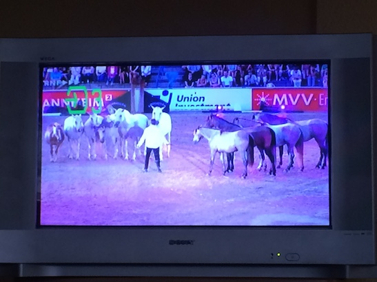 Horses on TV is common, this show was over an hour long. I couldn't understand the announcer but the performances were great!