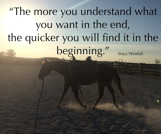 Horses Training: understanding the end goal improves the process