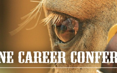 What it takes to make horses your day job, attend the Equine Career Conference
