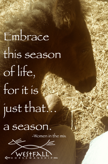 embrace this season of life for it is just that, a season.