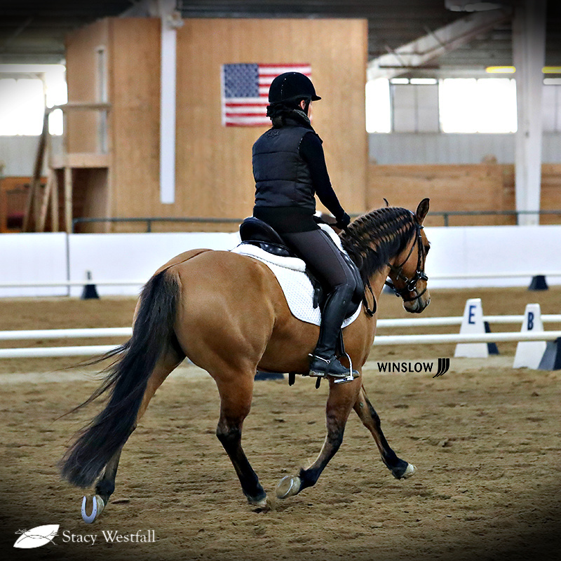 3 Pros and 3 Cons of having a reader for your dressage test - Official Site of Stacy Westfall