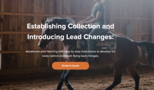 Establishing Collection and Introducing Lead Changes