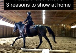 3 reasons to show at home virtual horse show