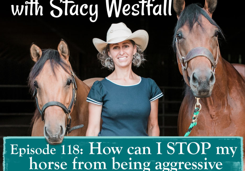 Episode 118_ How can I STOP my horse from being aggressive towards other horses?!