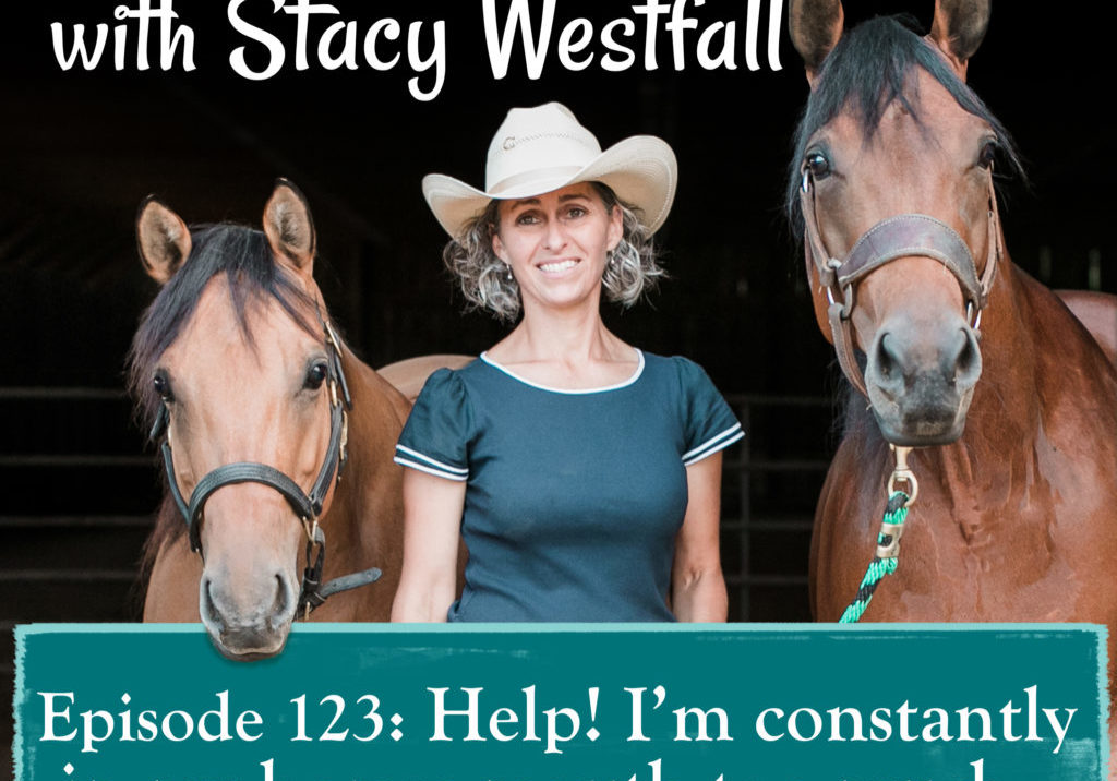 Episode 123_ Help! I'm constantly in my horses mouth too much…
